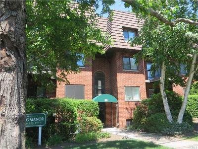 White Plains Condo/Townhouse For Sale: 39 Sterling Avenue #1