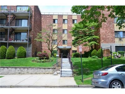 Yonkers Condo/Townhouse For Sale: 119 Dehaven Drive #229