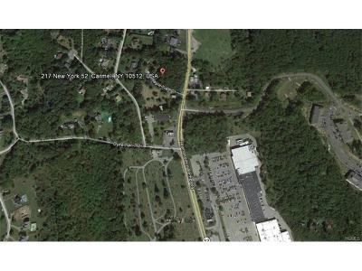Carmel Residential Lots & Land For Sale: 217 Route 52