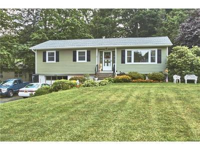 Chester Single Family Home For Sale: 20 Elm Street