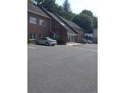 Ardsley Commercial For Sale: 631 Saw Mill River Road