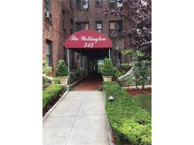 White Plains Condo/Townhouse For Sale: 312 Main Street #1A