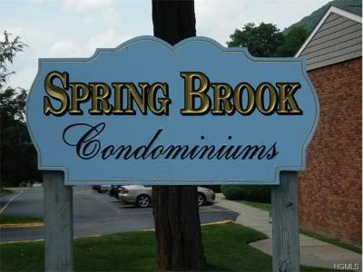 Cold Spring Condo/Townhouse For Sale: 8 Northern Avenue #F3