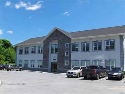 Chester Commercial For Sale: 1108 Kings Highway #2 b, c &