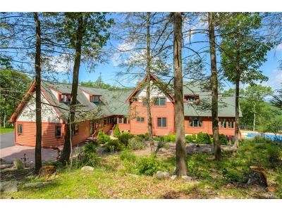 Hopewell Junction Single Family Home For Sale: 38 Long Hill Road