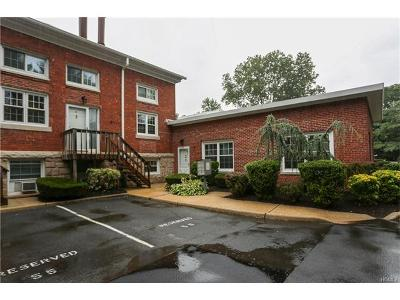 Tappan Condo/Townhouse For Sale: 215 Washington Street #17