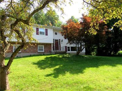 Rockland County Single Family Home For Sale: 8 Wallace Drive