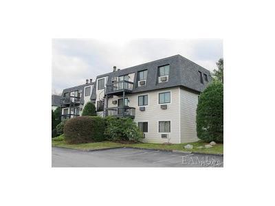 Carmel Condo/Townhouse For Sale: 311 Drew Lane #311