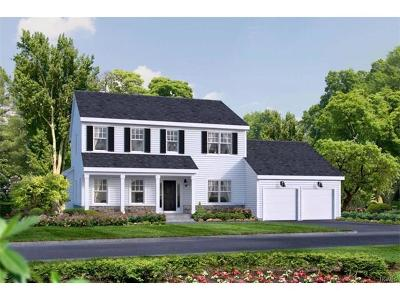 Goshen Single Family Home For Sale: 1 Harness Road