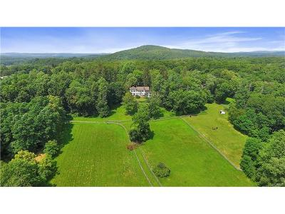 Millbrook Single Family Home For Sale: 2728 Route 44