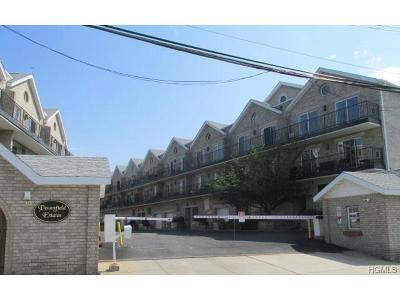 Bronx Condo/Townhouse For Sale: 17 Pennyfield Avenue #17-1