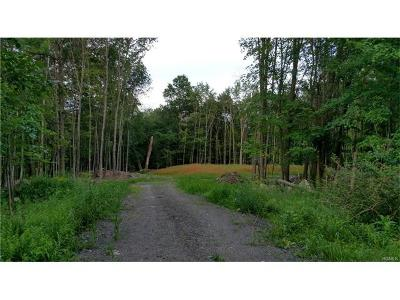 Bloomingburg NY Residential Lots & Land For Sale: $85,000