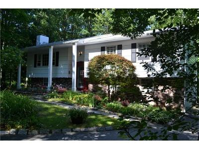 Stormville Single Family Home For Sale: 182 White Pond Road