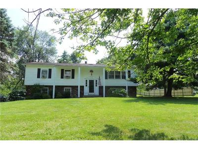 Warwick Single Family Home For Sale: 165 County Route 1