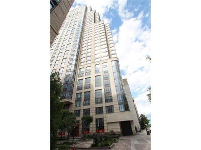 White Plains Condo/Townhouse For Sale: 10 City Place #28A