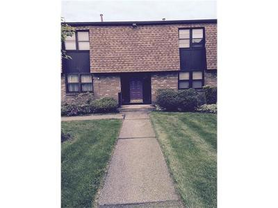 Nanuet Condo/Townhouse Sold: 27 New Holland