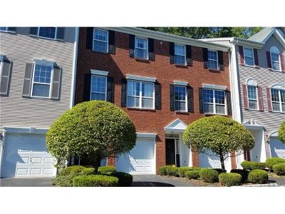 Rockland County Condo/Townhouse For Sale: 123 Meadow