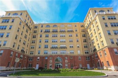 Westchester County Condo/Townhouse For Sale: 10 Byron Place #518