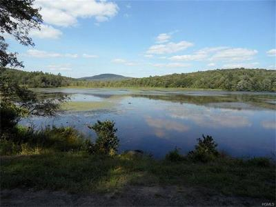 Swan Lake NY Residential Lots & Land For Sale: $39,900