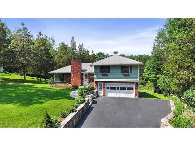 Putnam Valley Single Family Home For Sale: 55 Canopus Hollow Road