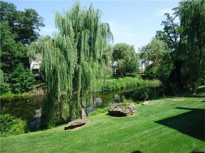 Ossining Condo/Townhouse For Sale: 204 Horseshoe Circle