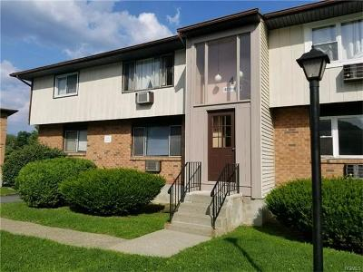 Newburgh Condo/Townhouse For Sale: 401 Parr Meadow Drive #401