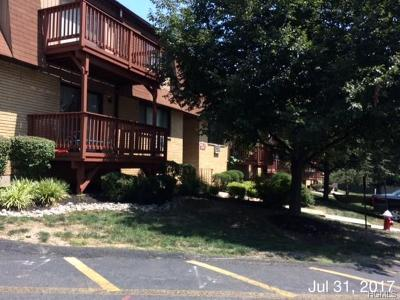 Rockland County Condo/Townhouse For Sale: 343 Richard Court