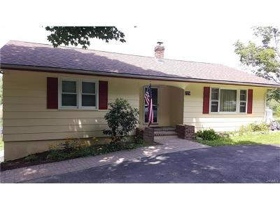 Middletown Single Family Home For Sale: 719 Prosperous Valley Road