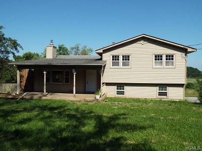 Goshen Single Family Home For Sale: 897 Pulaski Highway