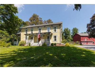 Wappingers Falls Single Family Home For Sale: 166 Maloney Road