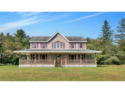 Livingston Manor, Roscoe Single Family Home For Sale: 303 Amber Lake Road