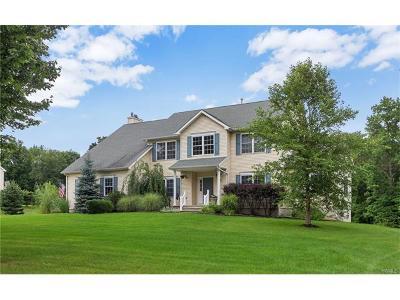 Goshen Single Family Home For Sale: 9 Danielle Drive