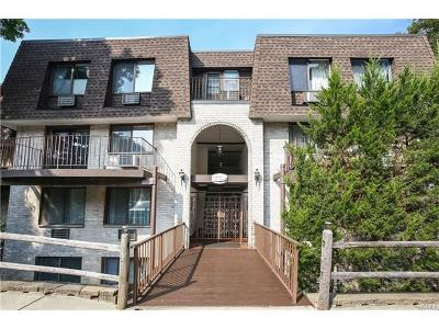 Ossining Condo/Townhouse For Sale: 5 Revolutionary Road #13
