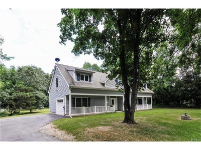 Single Family Home For Sale: 133 Martin Road