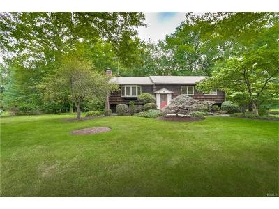 Rockland County Single Family Home For Sale: 6 Potter Lane