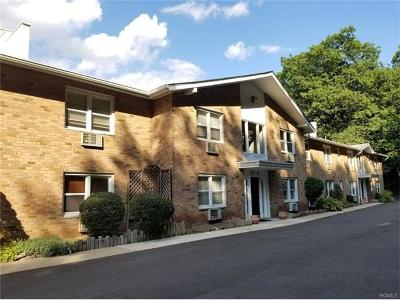 Rockland County Condo/Townhouse For Sale: 100 Dowd Street #D12