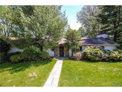 Ardsley Single Family Home For Sale: 17 Dellwood Lane