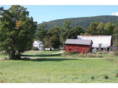 Dutchess County Single Family Home For Sale: 2259 Clove Road