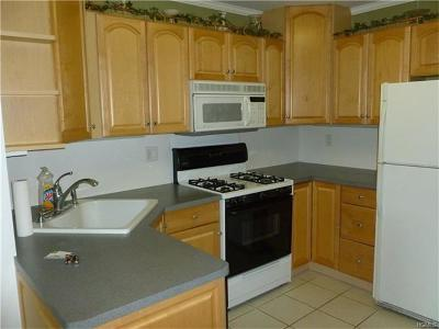 Rockland County Condo/Townhouse For Sale: 298 Country Club Lane