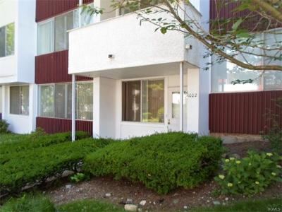 Westchester County Condo/Townhouse For Sale: 1002 Colony Drive