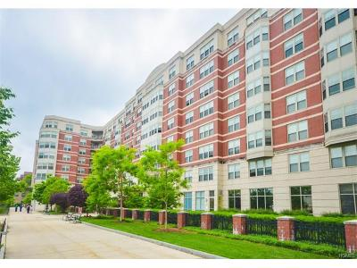 White Plains Condo/Townhouse For Sale: 300 Mamaroneck Avenue #836