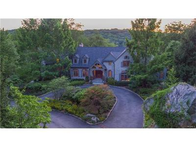 Sloatsburg Single Family Home For Sale: 8 Springhouse Road