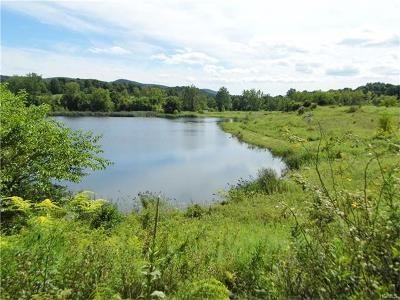 Wassaic Residential Lots & Land For Sale: 58 Benson Road