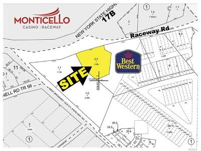 Monticello Commercial For Sale: Raceway Road