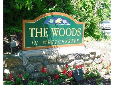Ossining Condo/Townhouse For Sale: 243 Woods Brooke Circle