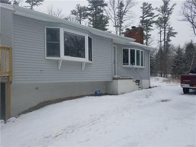 Pine Bush Single Family Home For Sale: 144 Cox Road