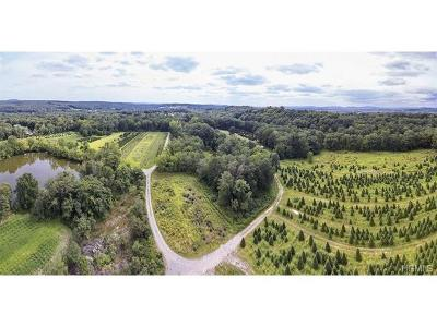 Pleasant Valley Residential Lots & Land For Sale: 587 Traver Road