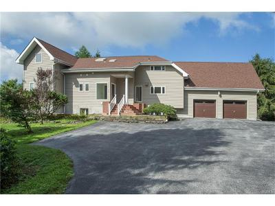 Pleasant Valley Single Family Home For Sale: 303 Freedom Road