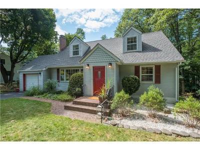 Nyack Single Family Home For Sale: 213 Hilltop Lane