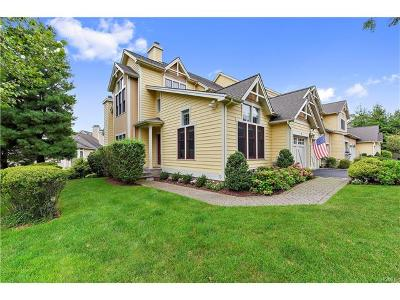 Dobbs Ferry Single Family Home For Sale: 28 Hudson Drive
